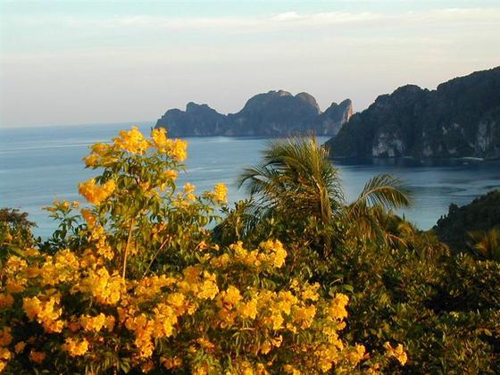 תצפית באי קופיפי, תאילנד.