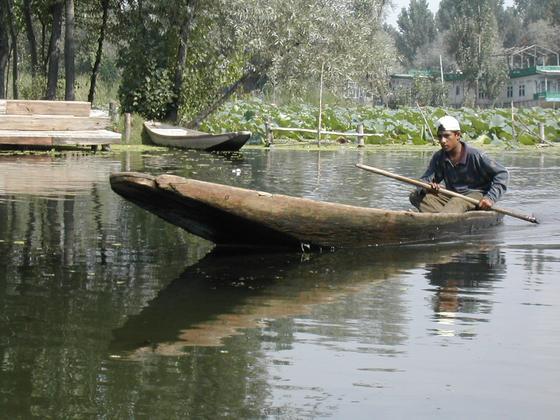 האגמים, סרינגאר, קשמיר, הודו.
