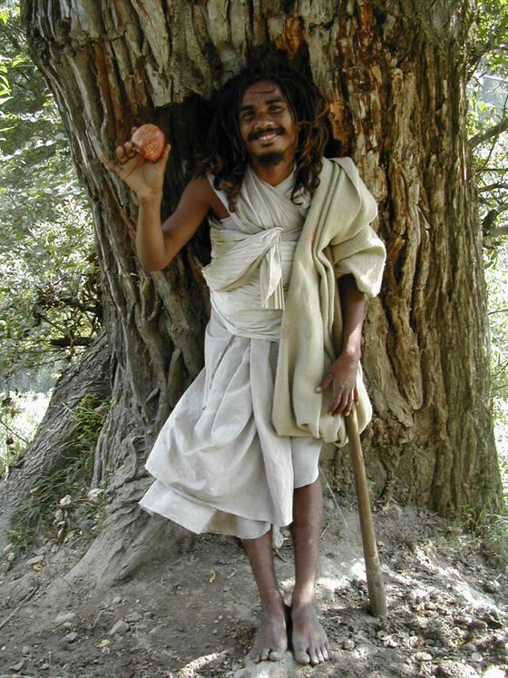 באבא מקומי, עמק פרווטי, הודו.