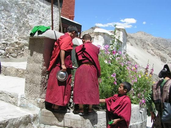 מנזר בטיקסה, לאדק, הודו.