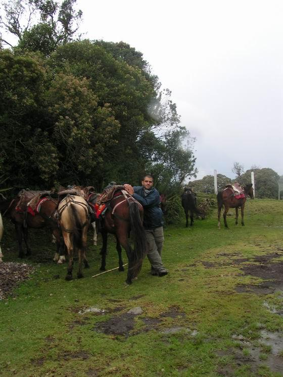 טיול סוסים בבניוס, אקוודור.
