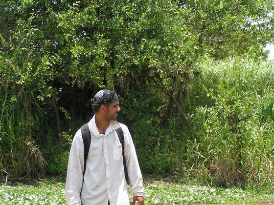 חיפוש אחרי אנקנדות, הביצות, בוליביה