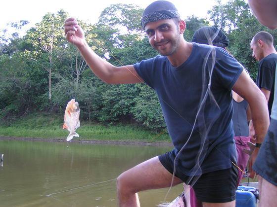 דגי פרינאה, ביצות, בולביה.