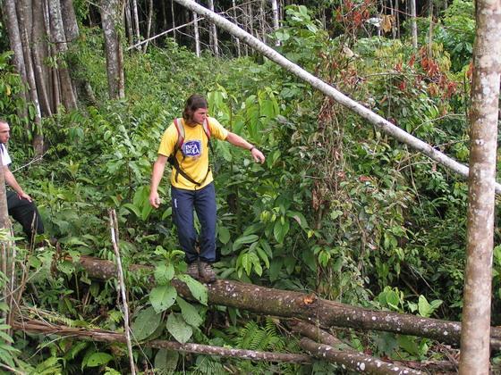 בג'ונגלים בדרך לקניון הינשופים, בולביה.