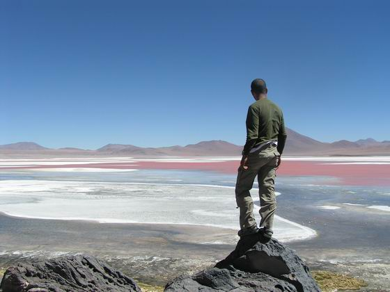 לגונות בשלל צבעים, לגונה Colorado, הסלאר, בוליביה.