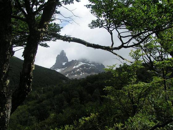 טרק Cerro Castillo