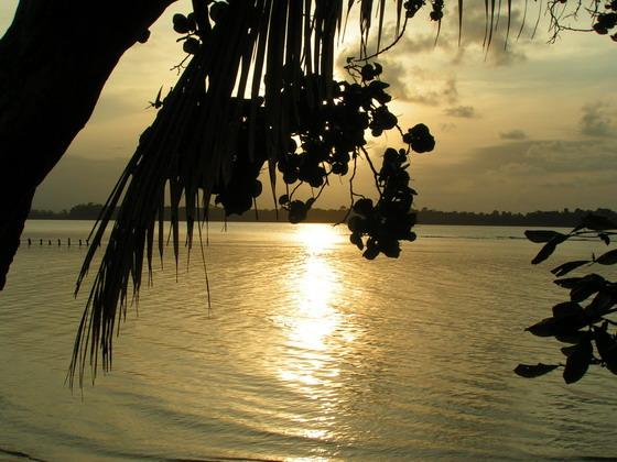 איי בוקס-דל-טורוס, פנמה.