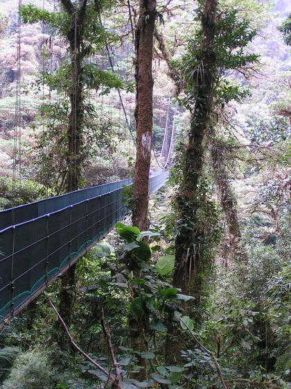 יערות גשם, קוסטה ריקה.
