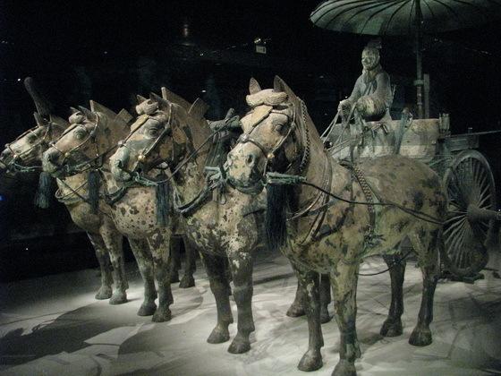 סוסי ברונזה