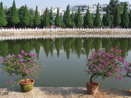 פארקים בקונמינג