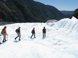קרחון פרנץ ג'וזף Franz Josef Glacier