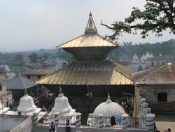 פשופטינת נפאל
