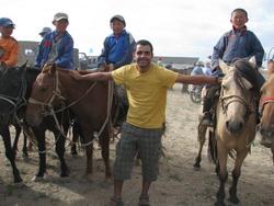 סוסים מונגולים