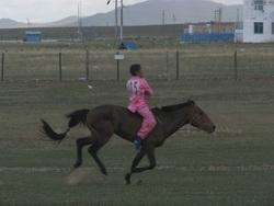 מרוץ סוסים הנדם